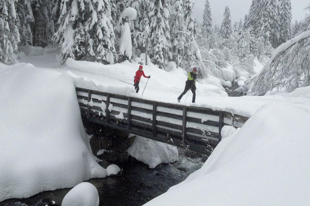 Langlaufsafari Hochpustertal und Osttirol - Brücke bei Lesach