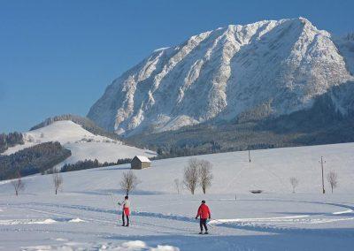 Langlaufsafari Rund um den Dachstein – SPORT & RELAX