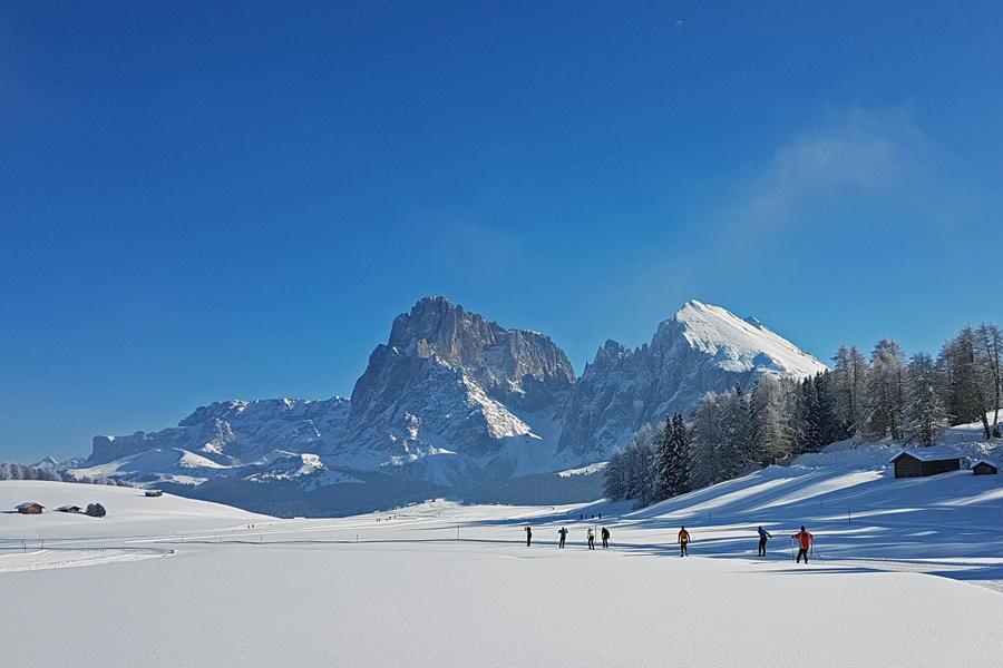 Langlaufsafari in den Dolomiten